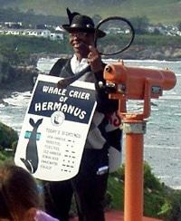 Whale Crier